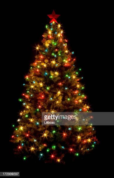 Arbre de Noël (XL) Ohio