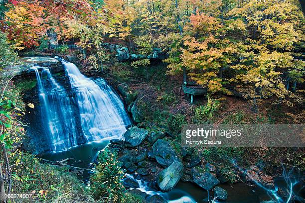 usa, ohio, small waterfalls in forest - valley stock pictures, royalty-free photos & images