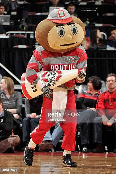 Ohio State mascot Brutus Buckeye performs for the crowd during a game against the Nebraska Cornhuskers on January 3 2012 at Value City Arena in...