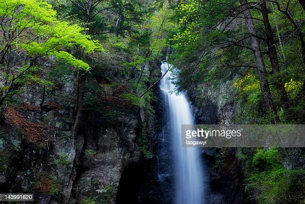ohtaki falls - isogawyi stock pictures, royalty-free photos & images