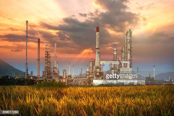 Oil and gas industry petrochemical plant at sunset