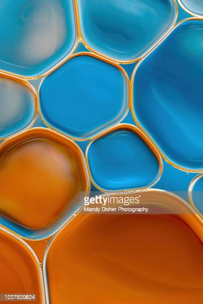 oil and water abstract - mandy muse stock pictures, royalty-free photos & images