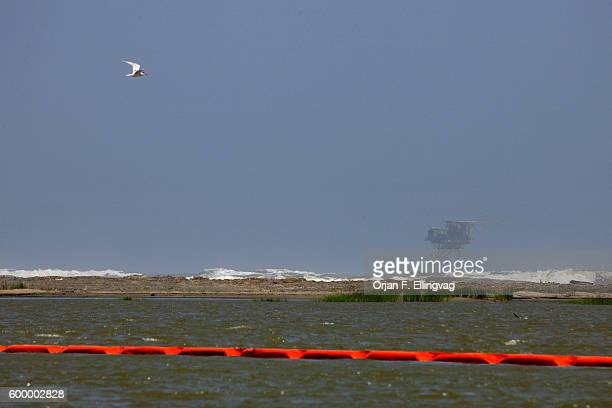 Oil booms laid out to protect the fragile ecosystem at the southern tip of the Mississippi delta An oil slick from the Deepwater Horizon explosion...