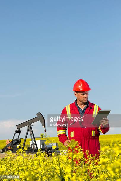 Oil Engineer in Canola