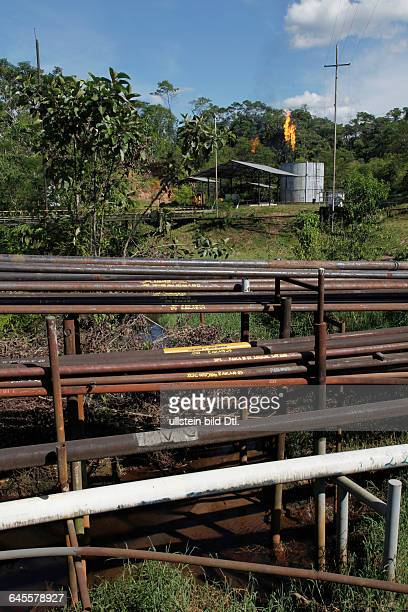 Oil extraction and pollution in the AmazonHuaorani Amerindians trying to survive through ecotourism against the threat of oil multinationalsYasuni...