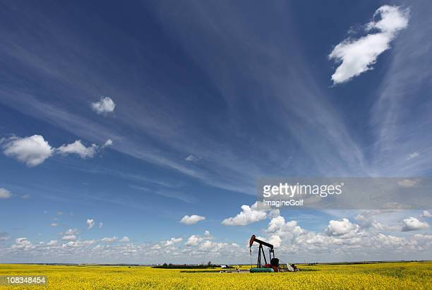 oil industry in alberta with pumpjack - calgary alberta stock pictures, royalty-free photos & images