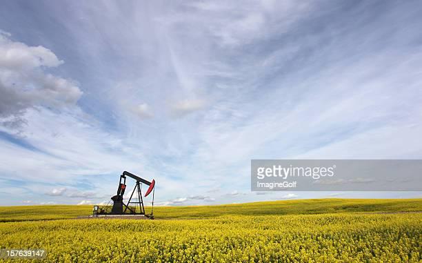 Oil Industry in Alberta with Pumpjack