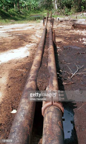 Oil pipelines next to a spill run through the Biseni region of Nigeria March 2001 in southern Nigeria Nigeria is Africa biggest oil producer but...