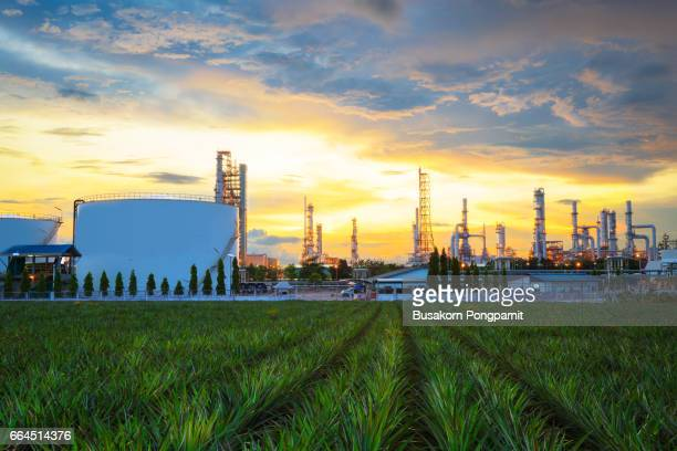 Oil refinery industry at twilight