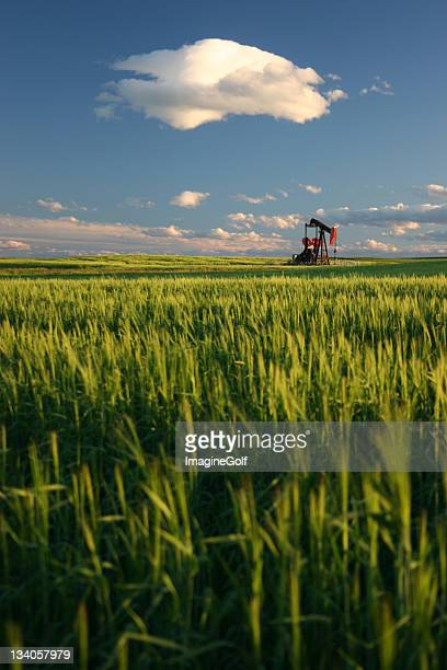 Oil Rig on the Prairie in Oilsands Region