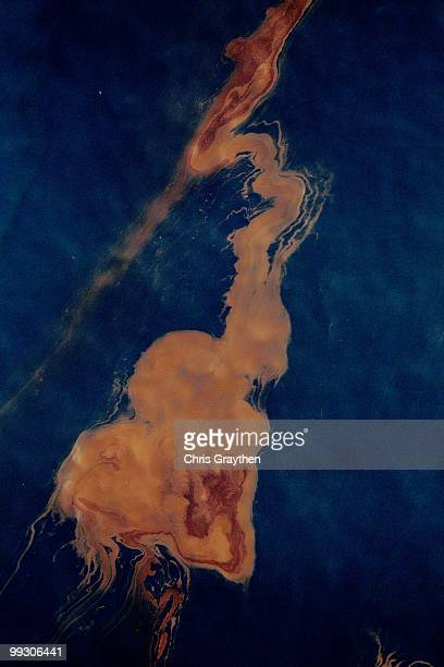 Oil sits on the surface of the water that has leaked from the Deepwater Horizon wellhead in the Gulf of Mexico on April 28 2010 near New Orleans...