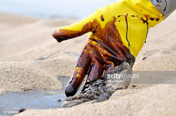 Oil Spill: Beach Clean-up