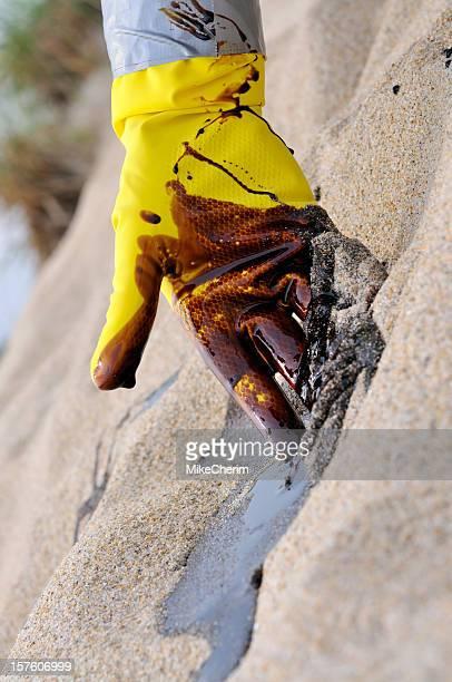 ölpest: endloser sommer reinigung - gift hand stock-fotos und bilder
