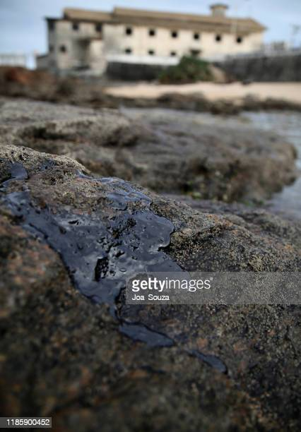 oil spill - istock images stock pictures, royalty-free photos & images