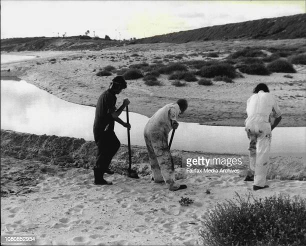 Oil spillage at the Ampol refinery in Yarra BayWorkers building a levee around the oil spill January 24 1981