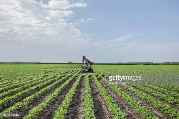 Oil well on agriculture field against sky