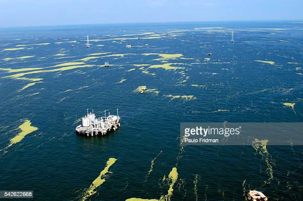 Oil wells across Maracaibo's lake the center of Venezuelas petroleum industry