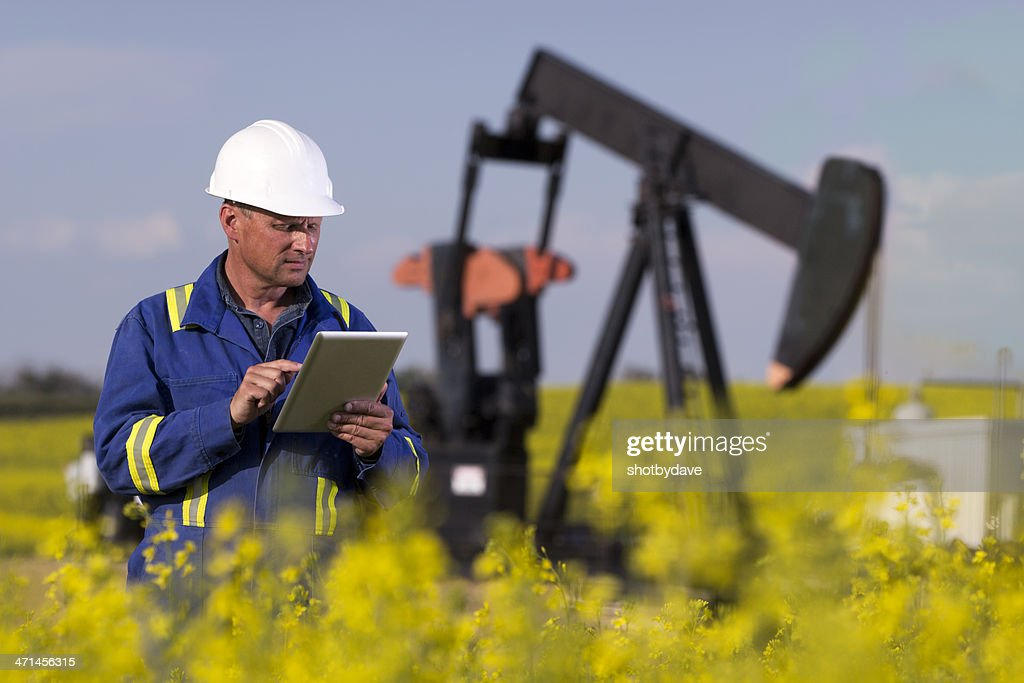 Oil Worker in Canola : Stock Photo