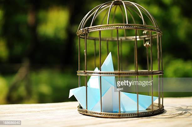 L'Oiseau bleu_Bird cage