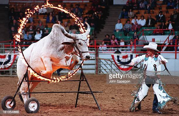 Oklahoman Leon Adams sends 'Geronimo' one of his performing Brama bulls through a ring of fire during an intermission at the NWSS rodeo