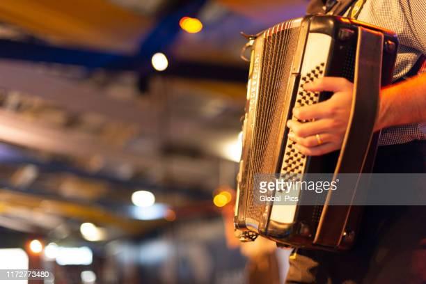 oktoberfest-blumenau, santa catarina-brazil - accordion stock pictures, royalty-free photos & images