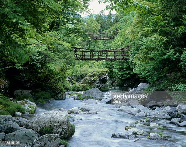 oku-iya vine bridges and iya valley, miyoshi, tokushima, japan - vale de iya - fotografias e filmes do acervo