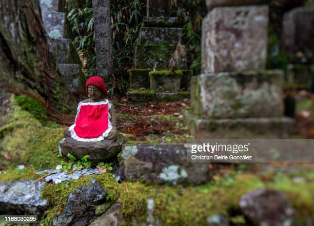 okunoin cemetery in koyasan - christian beirle gonzález stock pictures, royalty-free photos & images