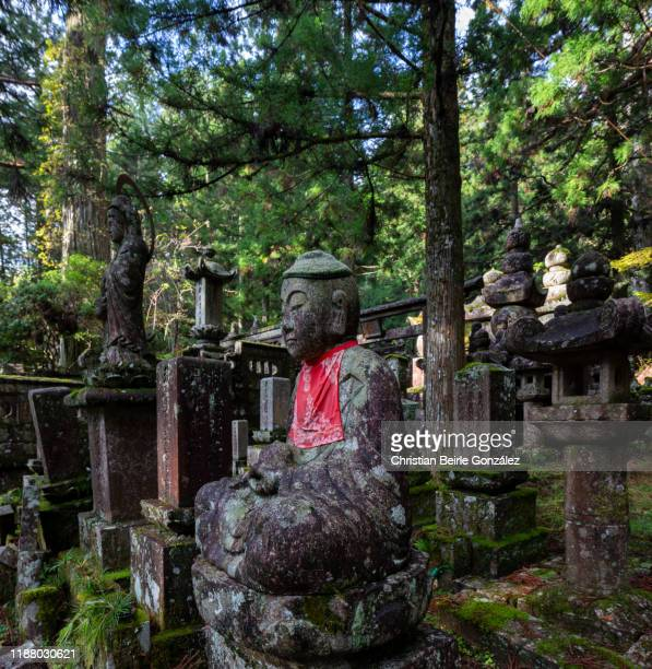 okunoin cemetery in koyasan - christian beirle stock pictures, royalty-free photos & images
