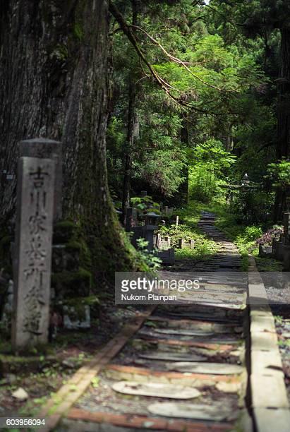 okunoin, koya san, wakayama prefecture, japan. - koyasan stock-fotos und bilder