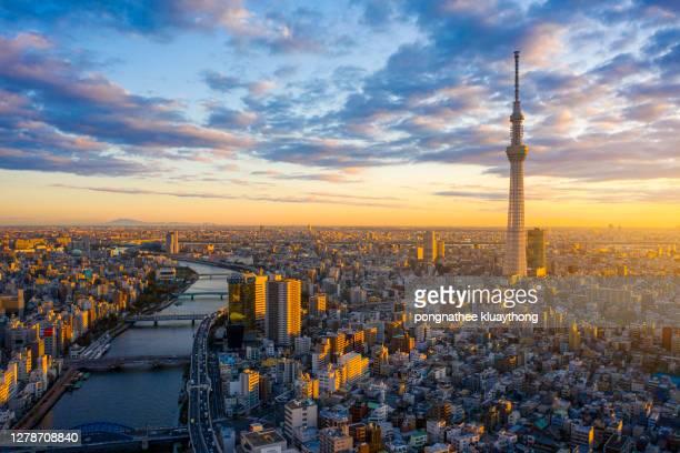 okyo cityscape with tokyo sky tree visible in tokyo city, japan on sunrise. - prefettura di tokyo foto e immagini stock