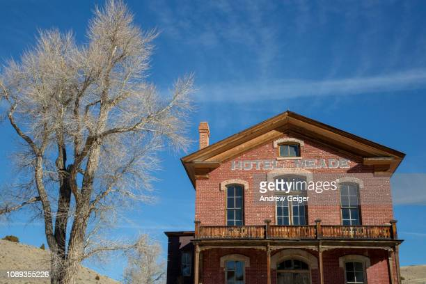 Old abandoned brick hotel in ghost town of Bannack, MT with cottonwood tree next to it.