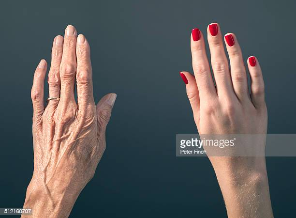 old and young hands - aging process stock pictures, royalty-free photos & images