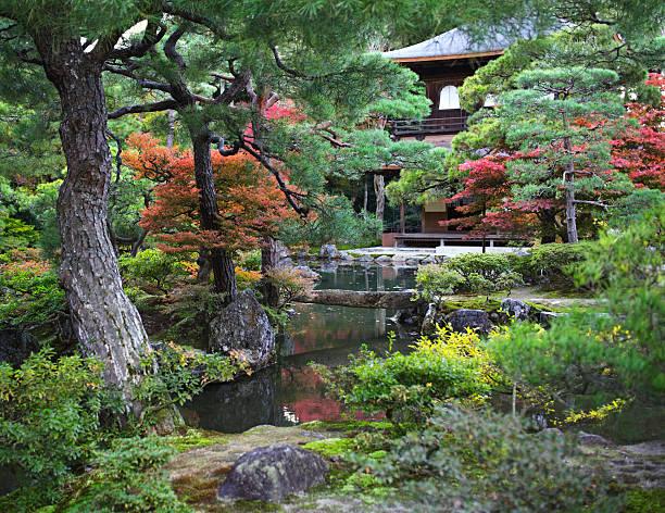 Old asian garden