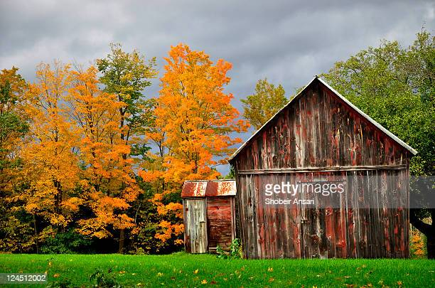 Old barn and autumn colors in new york state