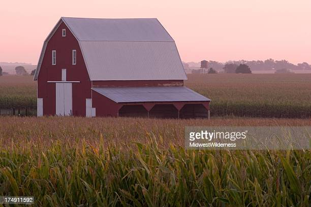 old barn - nebraska stock photos and pictures