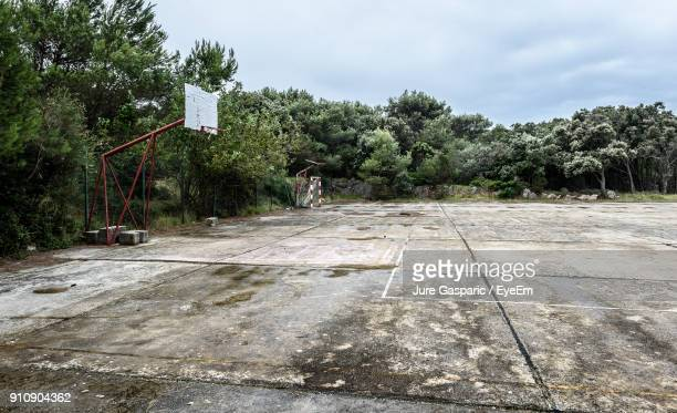 old basketball court against trees - abandoned stock pictures, royalty-free photos & images
