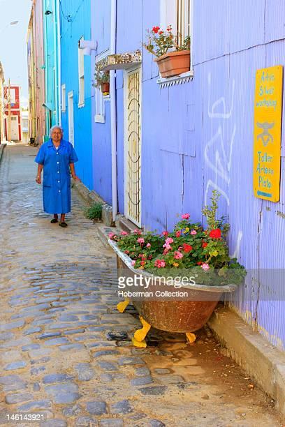 Old bath Flowerbed in Valparaiso