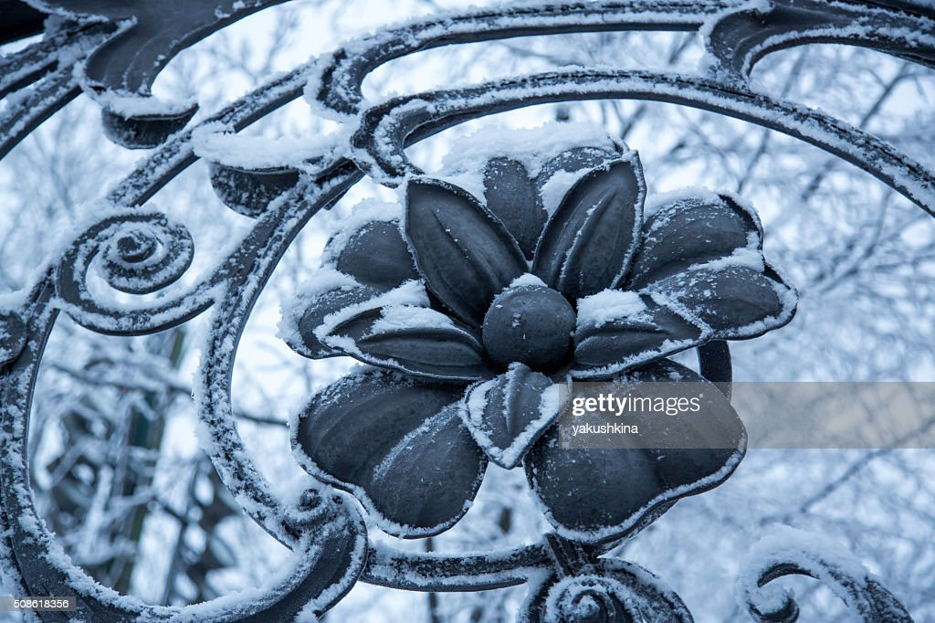 Old beautiful cast iron fence flower : Stock Photo
