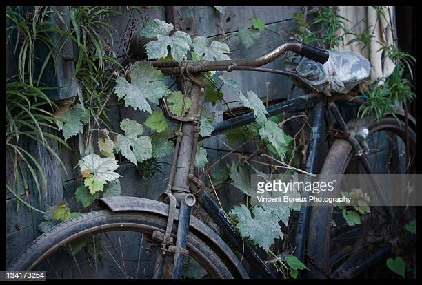 Old bicycle leaning towards climbers