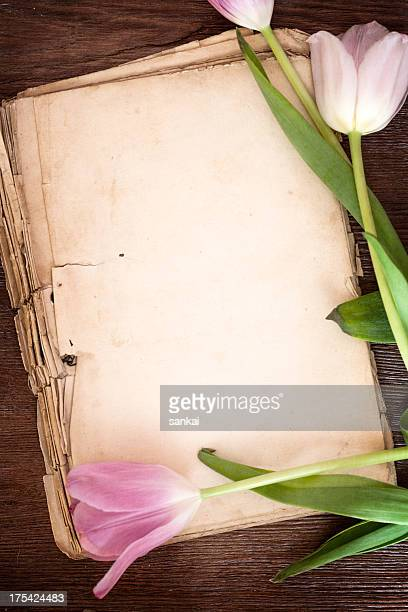 Vieux papier pages