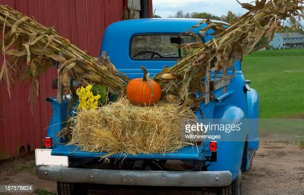 旧ブルーのピックアップトラックで秋の収穫ファームシーン