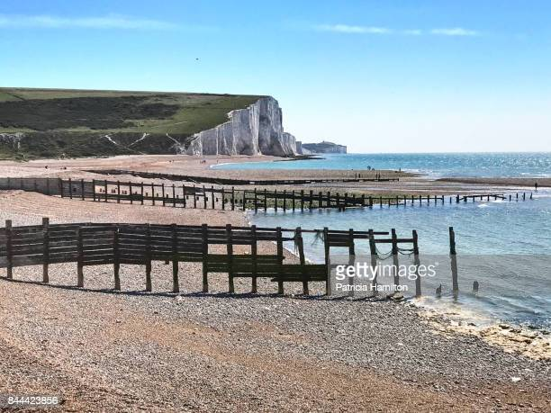 Old breakwaters at Cuckmere Haven.