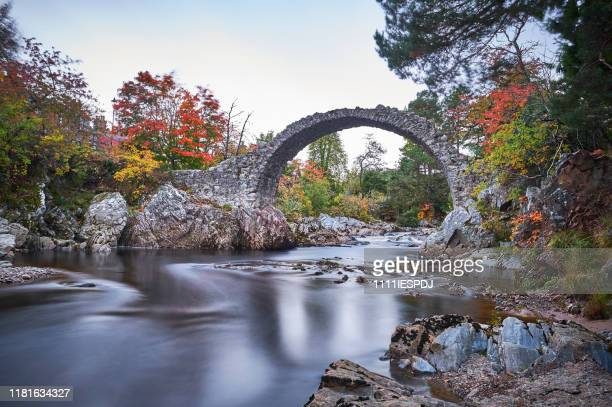 old bridge in scotland where the river flows underneath the rocks in the fall. - scotland imagens e fotografias de stock