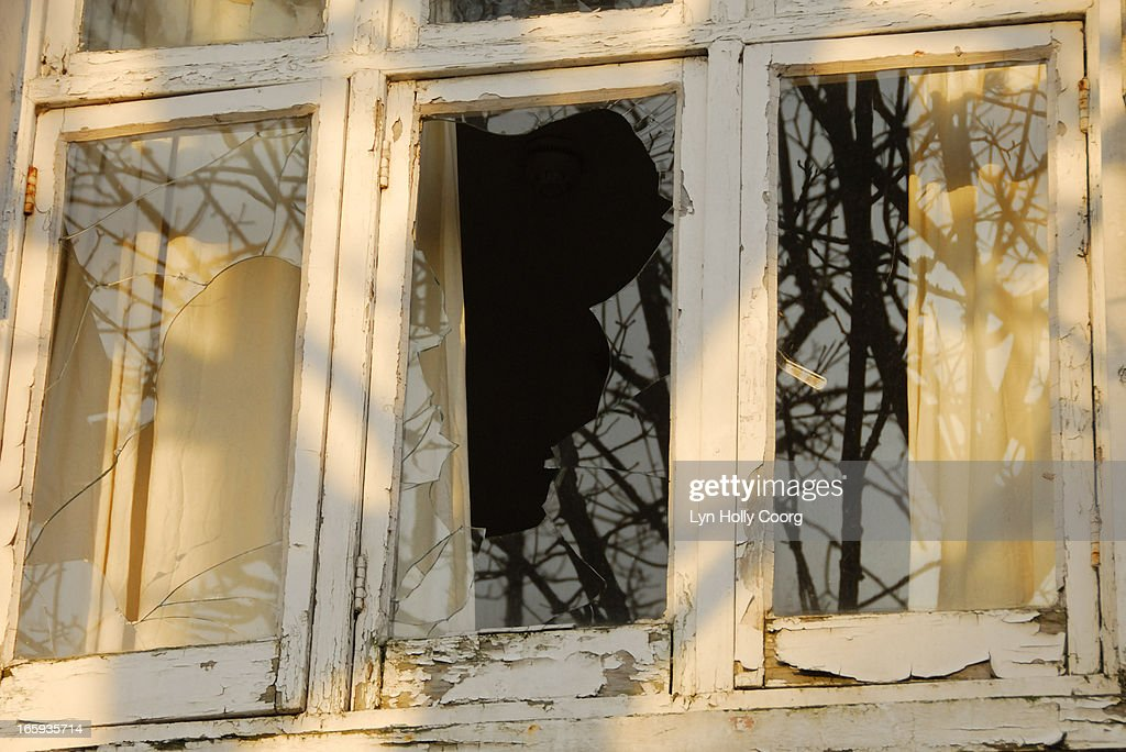 Old broken window with reflected trees : Stock Photo
