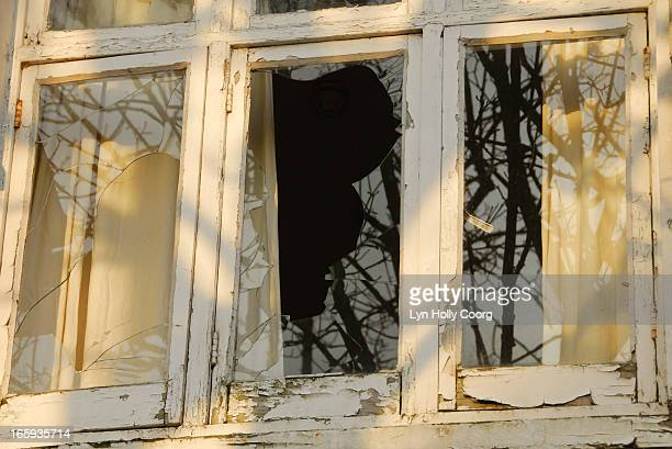 old broken window with reflected trees - lyn holly coorg stock-fotos und bilder