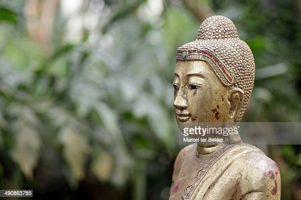 Old buddha statue in a garden