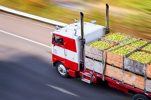 Old cab over big rig semi truck transporting pears in wooden boxes on flat bed semi trailer 1138550166
