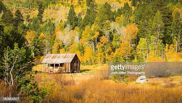 old cabin and fall colors, hope valley, california - hope imagens e fotografias de stock