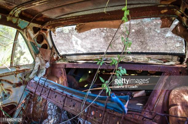 old car 3 - lianne loach stock pictures, royalty-free photos & images
