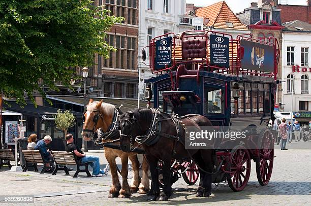 Old carriage with two draught horses at the Market Square, Antwerp, Belgium.